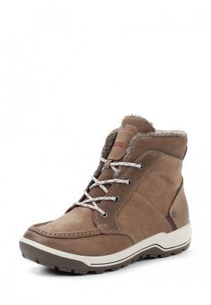 Ботинки TRACE LITE ECCO. Цвет: коричневый