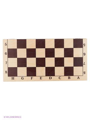 Шахматы лакированные Гроссмейстерские 400х200х55 Нарды. Цвет: бежевый, черный