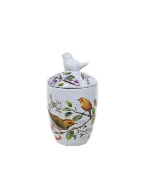 Банка для сыпучих продуктов Birds, Polystar. Цвет: светло-зеленый