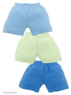 Шорты, 3 шт. Luvable Friends. Цвет: голубой, светло-зеленый, синий