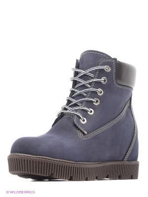 Ботинки JUST COUTURE. Цвет: синий, коричневый
