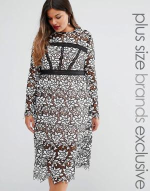 Truly You Платье-футляр премиум из цветочного кружева с длинными рукавами. Цвет: мульти