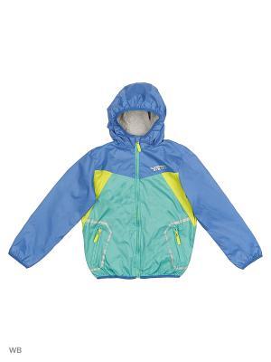 Куртка ACOOLA. Цвет: синий, зеленый