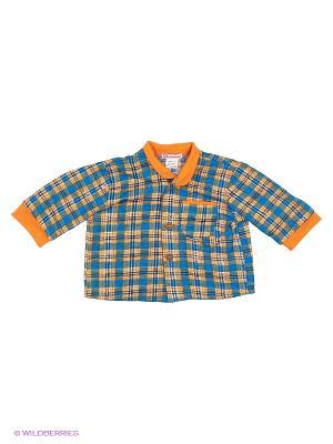 Рубашка Мы команда. Цвет: голубой