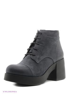 Ботинки Donna Ricco. Цвет: синий