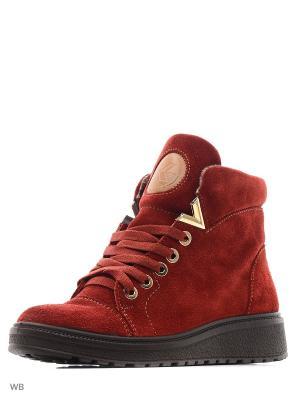 Ботинки Marko. Цвет: бордовый