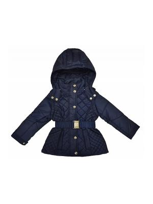 Куртка/жилет BORELLI. Цвет: синий