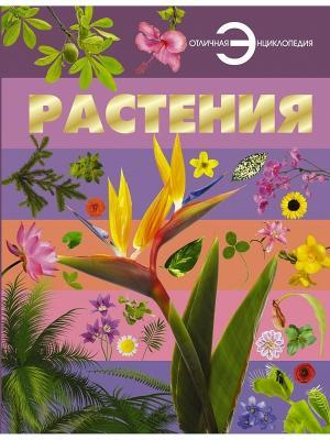 Растения Издательство АСТ. Цвет: белый
