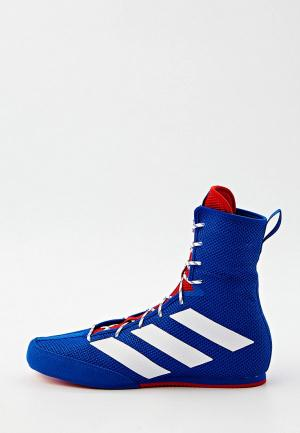 Боксерки adidas BOX HOG 3. Цвет: синий