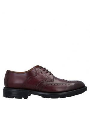 Обувь на шнурках CAMPANILE. Цвет: красно-коричневый