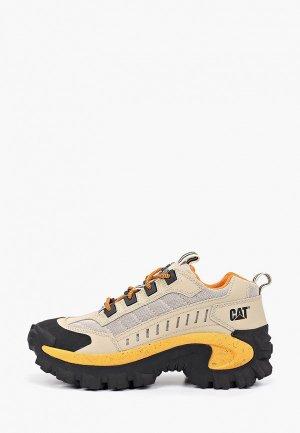 Ботинки трекинговые Caterpillar INTRUDER. Цвет: бежевый