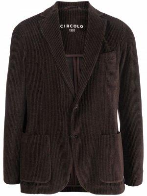 Вельветовый пиджак Circolo 1901. Цвет: коричневый