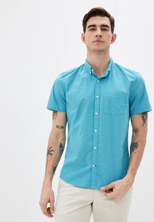 Рубашка Gap. Цвет: бирюзовый