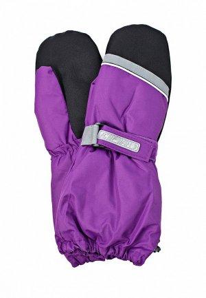 Варежки Icepeak IC647DGJR803. Цвет: фиолетовый