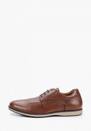 Туфли Geox. Цвет: коричневый