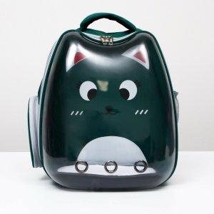 Рюкзак для переноски животных Пижон