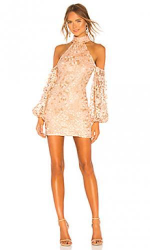 Мини платье sole Michael Costello. Цвет: розовый