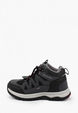 Ботинки Northland MOOSE. Цвет: серый