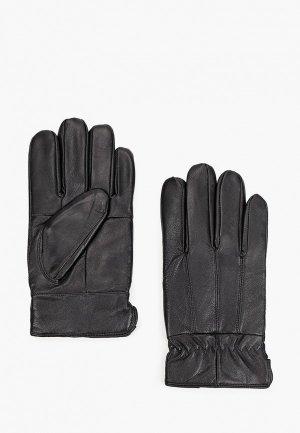 Перчатки Zolla. Цвет: черный