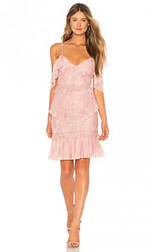 Платье valorie Bardot. Цвет: румянец
