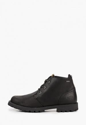 Ботинки Barbour Pennine Chukka Boot. Цвет: черный