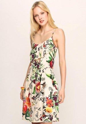 Платье Firetrap FI614EWBU970. Цвет: мультиколор
