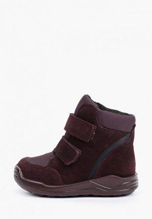 Ботинки Ecco URBAN MINI. Цвет: бордовый