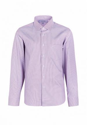 Рубашка Stenser. Цвет: разноцветный
