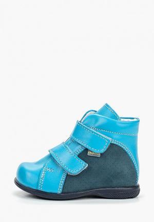 Ботинки Детский скороход. Цвет: голубой