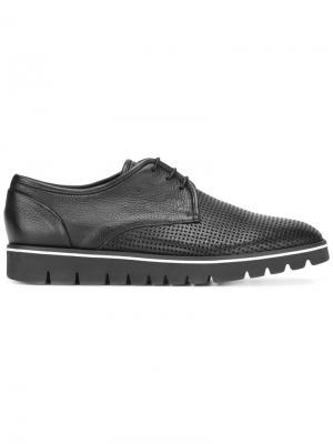 Перфорированные ботинки Дерби Baldinini. Цвет: черный