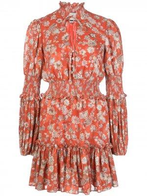 Платье мини Rosewell Alexis. Цвет: красный
