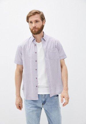 Рубашка Al Franco. Цвет: фиолетовый