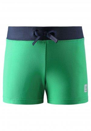 Плавки Penang Зеленые Reima. Цвет: зеленый