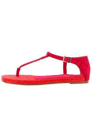 Сандалии Flip Flop. Цвет: розовый