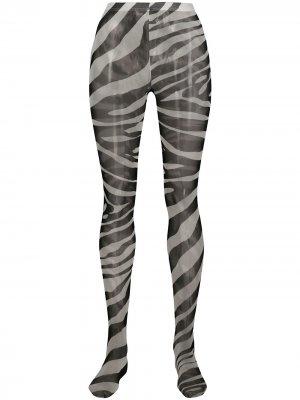 Колготки с зебровым принтом Dolce & Gabbana. Цвет: черный