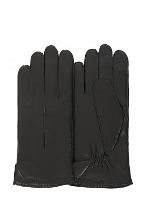 Перчатки Michel Katana MP002XM0YCZM. Цвет: черный
