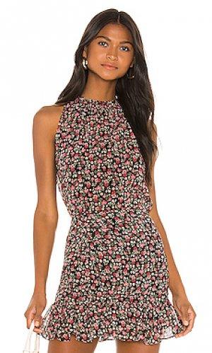Блузка jenny Bailey 44. Цвет: черный