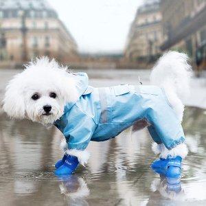 4шт Резиновые сапоги для домашних животных с текстовым рисунком SHEIN. Цвет: синий