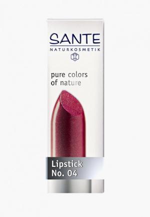 Помада Sante Розовый клевер № 04. Цвет: бордовый