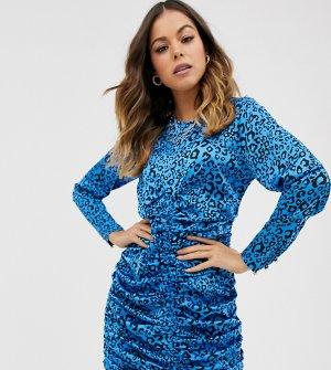 Присборенное платье мини с леопардовым принтом Ebonie n Ivory-Голубой ivory