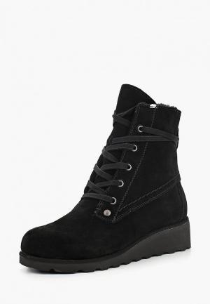 Ботинки Bearpaw. Цвет: черный