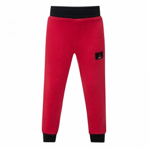Flight 5 Lite Pant Jordan. Цвет: красный