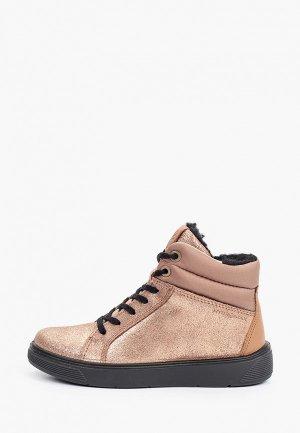 Ботинки Ecco STREET TRAY K. Цвет: бежевый