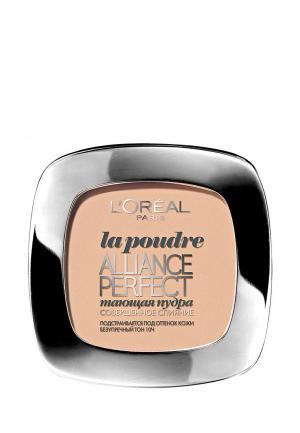Пудра LOreal Paris L'Oreal Alliance Perfect, Совершенное слияние, выравнивающая и увлажняющая, оттенок N4, Бежевый, 9 г. Цвет: бежевый