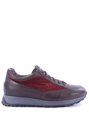 Кожаные кроссовки Oracle Alberto Guardiani. Цвет: разноцветный