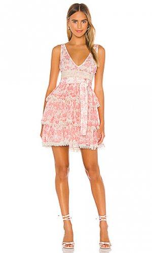 Мини платье peach Lovers + Friends. Цвет: розовый