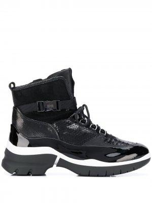 Лакированные ботинки с тиснением Hogl. Цвет: черный