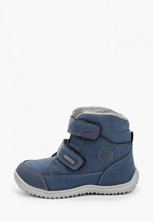 Ботинки Kakadu. Цвет: синий