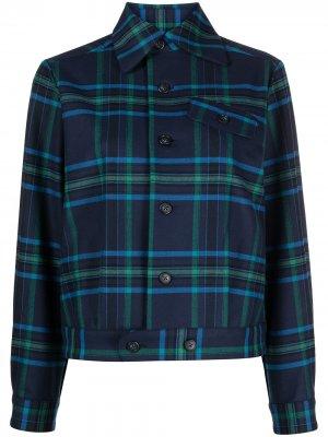 Куртка-бомбер в клетку тартан Needles. Цвет: синий