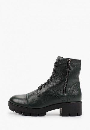 Ботинки Argo. Цвет: зеленый